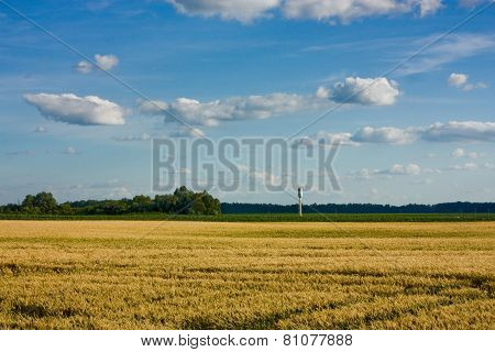 Water Tower In Wheat Field