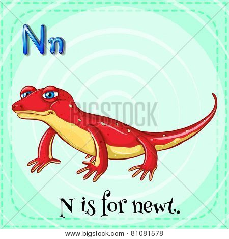 Illustration of a letter N is for newt