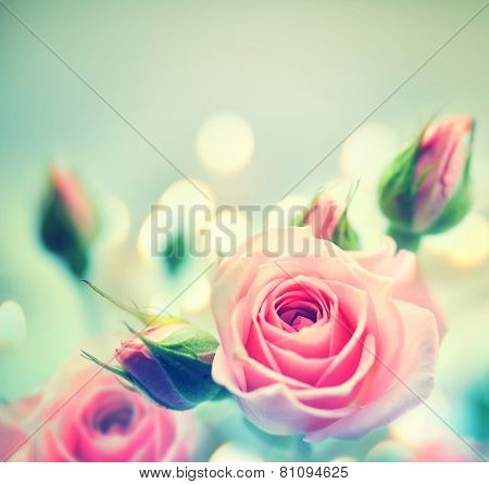 Beautiful Pink Roses. Vintage Styled card design. Retro style toned. Valentine's day art. Very soft focus