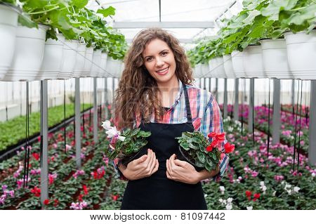 Worker examining plants in a colorful greenhouse