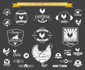 Vector Chicken Labels, Charts and Design Elements