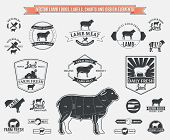 pic of working animal  - Lots of vector lamb design elements for your work - JPG