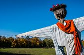 picture of scarecrow  - Scarecrow in a field on a sunny day - JPG