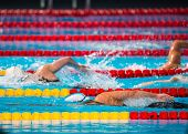 picture of swim meet  - Frestyle woman swimming race in swimming pool - JPG