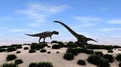 picture of dinosaurus  - mamenchisaurus versus ceratosaurus - JPG