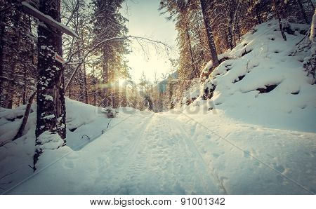 Morning road in snow