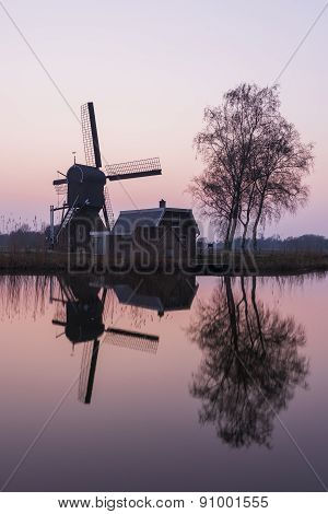 Mill And Tree At Woerdense Verlaat