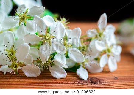 pears tree flowers background