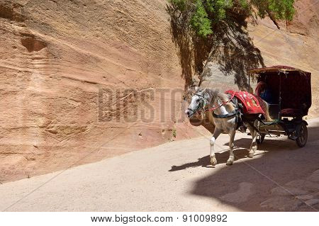 Horse Carriage In A Gorge, Siq Canyon In Petra
