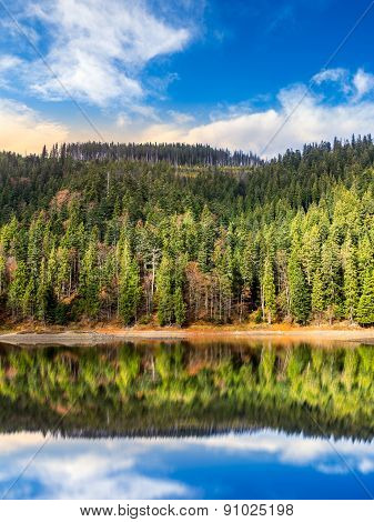 Lake Near The Mountain In Pine Forest At Sunrise