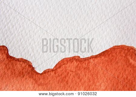 Burnt Orange Watercolor 5
