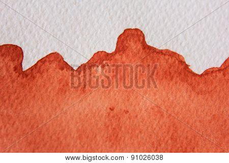 Burnt Orange Watercolor 4
