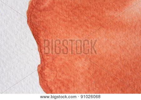 Burnt Orange Watercolor 10
