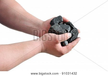 Coal In The Miner's Hands