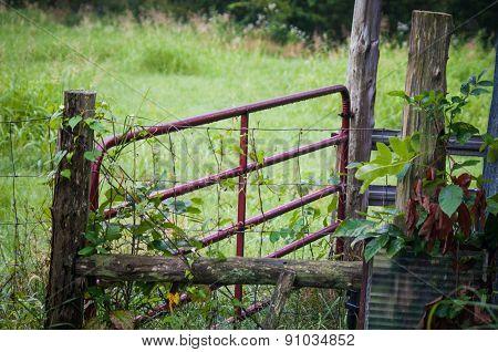 Red livestock gate