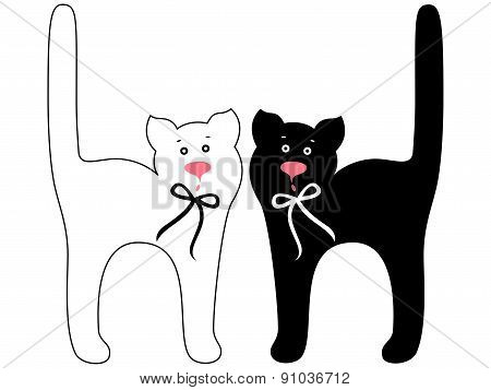 Black And White Funny Cats