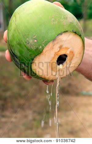 Coconut Water Being Poured From The Fresh Fruit