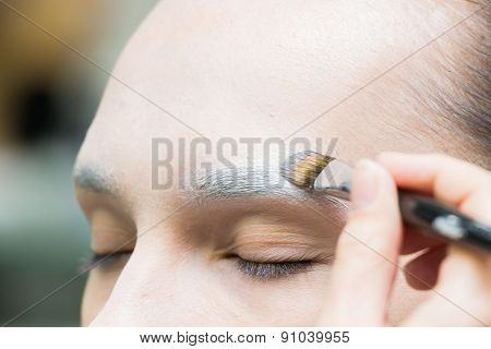 Application of powder on the model's face. Makeup artist in a beauty salon doing make-up special bru