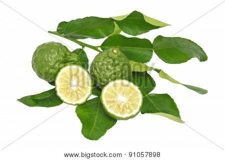 Bergamot Kaffir Lime Leaves Herb Fresh Ingredient Isolated