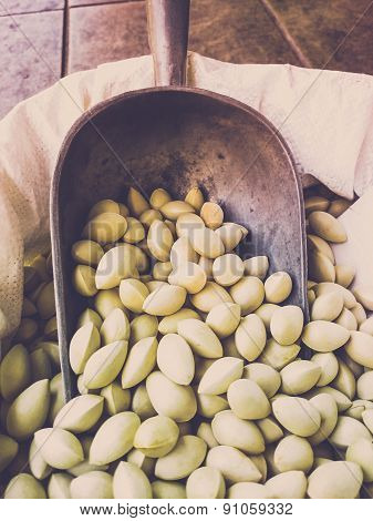 Gingko nuts on a market