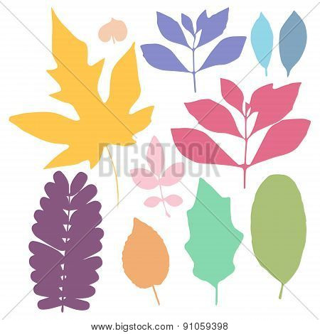 Colorful Leaf Set