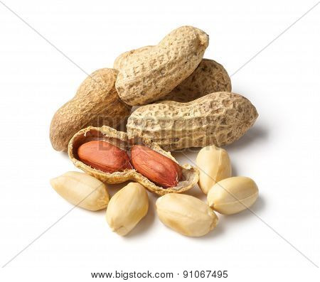 Peanuts On White Ground