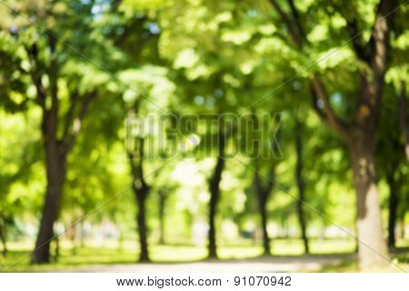 Abstract nature background, intentionally completely defocused image
