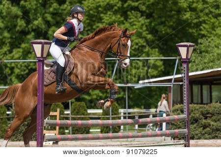 Side View Of Horsewoman Jumping A Brown Horse