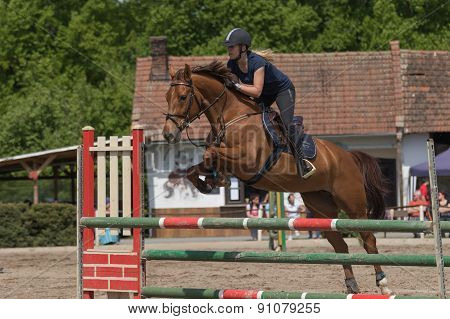 Young Horsewoman In Black Is Jumping A Brown Horse