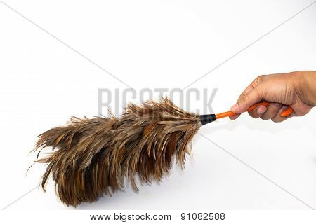 Hand Holding Feather Broom Isolated