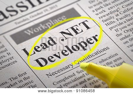 Lead NET Developer Vacancy in Newspaper.