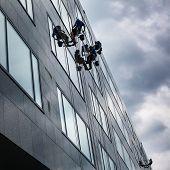 image of high-rise  - Climbers washing windows of a modern high - JPG