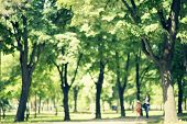 Defocused Background Of Park In Spring Or Summer Season, Blurred People Walking, Retro Colors