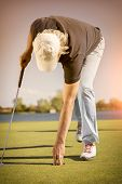 picture of pick up  - Male senior golf player picking up golf ball from hole on green - JPG