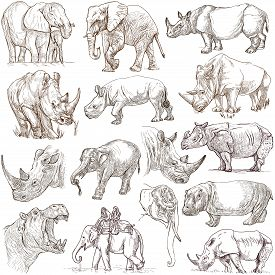 image of freehand drawing  - HEAVY ANIMALS  - JPG