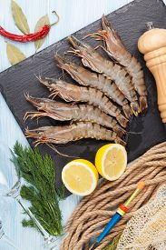 picture of fishing bobber  - Fresh raw tiger prawns and fishing equipment on wooden table - JPG