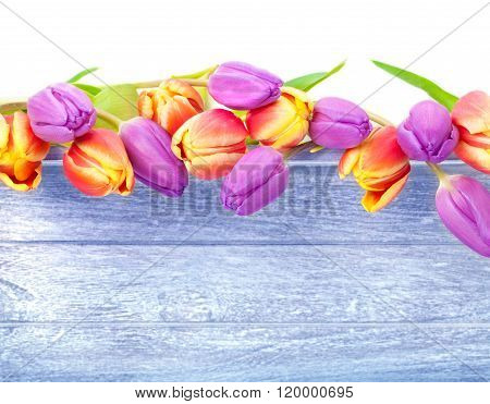Tulips, Wood, Card