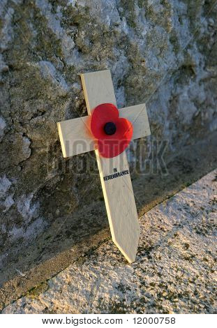 Rememberance Poppy