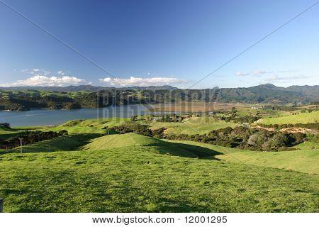 Grüne Weideland, Coromandel Halbinsel, Neuseeland