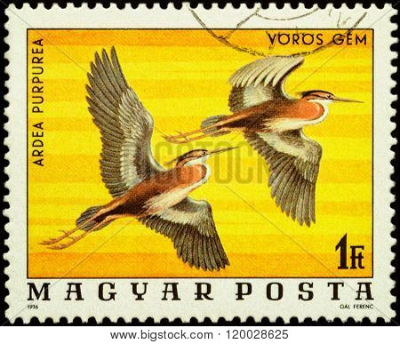 Purple Heron (ardea Purpurea) On Postage Stamp