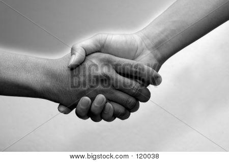 Hand Shake Black& White