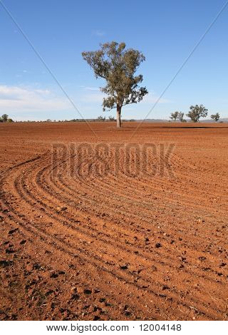 The red soil of Australia in a freshly ploughed field