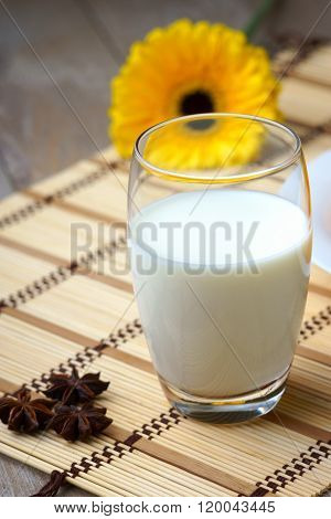A glass of milk, gerber and anise