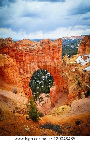 Natural Bridge Point In Bryce Canyon National Park..