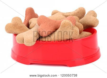 Snack food for dogs biscuits shaped as bone