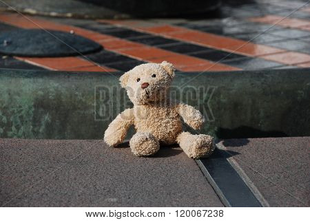 A Forgotten Teddy Bear