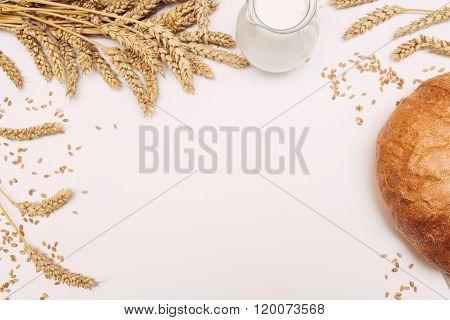 Milk, wheat grain and bread on white background