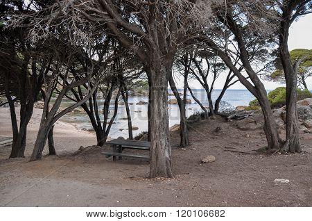 Picnic Spot: Shelley Cove, Western Australia