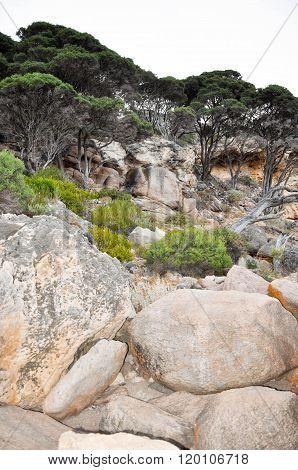 Limestone Cliffs in Western Australia