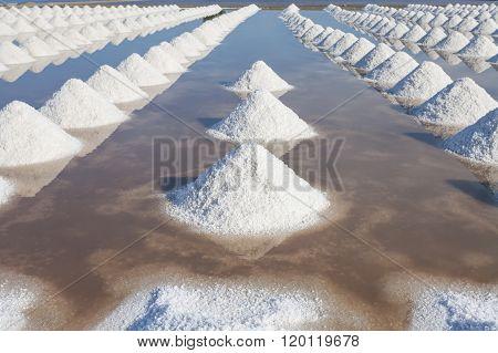 Salt In Sea Salt Farm Ready For Harvest, Thailand.